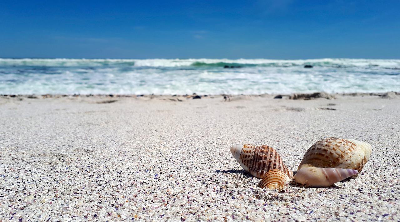 Best Beaches in Benalmádena